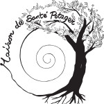 MSP logo vectorisé ép5